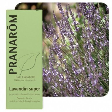 Huile essentielle de Lavandin super - 10 ml - Pranarôm
