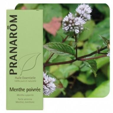 Huile essentielle de Menthe poivrée - 10 ml - Pranarôm