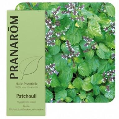 Huile essentielle de Patchouli - 5 ml - Pranarôm