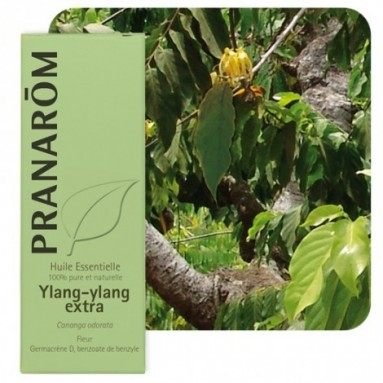 Huile essentielle d'Ylang-ylang - 5 ml - Pranarôm
