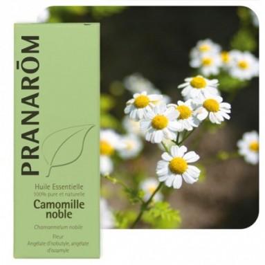 Huile essentielle de Camomille romaine - 5 ml - Pranarôm