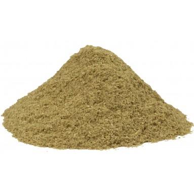 Saponaire poudre