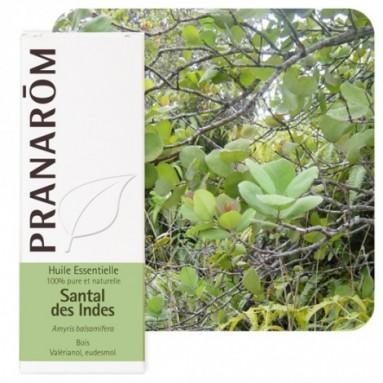 Huile essentielle de Santal des Indes - 10 ml - Pranarôm